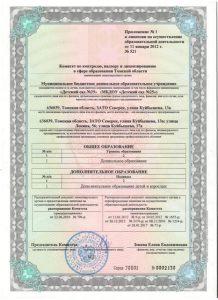 Копия Приложение к лицензии (допы)
