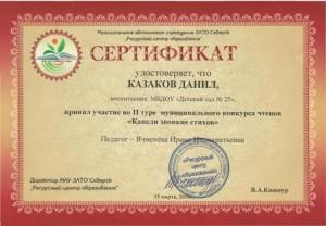 Сертификат Казаков