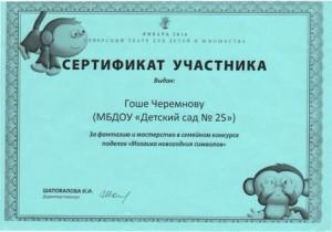 Сертификат Черемнов1