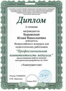 Диплом Буравская Ю.Н.